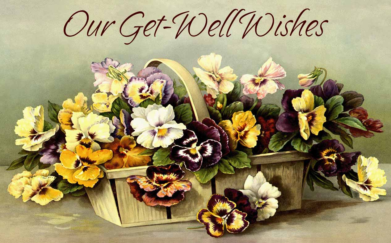 Get Well Wishes. What to Write in a Get Well Soon Card